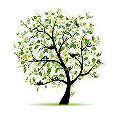 Different Spring tree elements vector 05 - Vector Plant free download