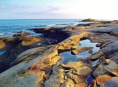 """The epitome of """"the rocky New England Coast."""" Black Point hiking trail offers vistas like this to anyone wanting a breathtaking view. A ten minute drive from my home. Thru Hiking, Hiking Trails, I Love The Beach, Appalachian Trail, Salt And Water, Ocean Waves, Beautiful Sunset, Rhode Island, New England"""