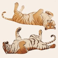 Big Cats Art, Furry Art, Cat Art, Animal Sketches, Animal Drawings, Cool Drawings, Inspiration Art, Art Inspo, Tiger Art