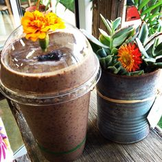 Naked Treaties @nakedtreaties | Websta (Webstagram) Raw Bars, Planter Pots, Naked, Beautiful Pictures