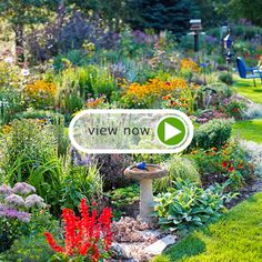 See How to Choose the Perfect Plants for Your Garden