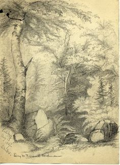 Image of A73-64.161, Catskill Mountains Drawing by Lucy Durand Woodman, 1867. MHS Museum Collections