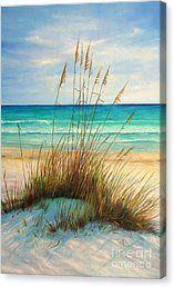 Siesta Key Beach Dunes Canvas Print by Gabriela Valencia