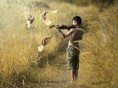 Birds Symphony - JD Ardiansyah