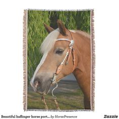 Beautiful haflinger horse portrait throw blanket Horse Portrait, Portrait Photo, Artwork Pictures, Photos, Haflinger Horse, Portrait Acrylic, Photo Print, Acrylic Wall Art, Home Living