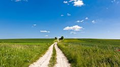 Road trough the fileds - Road as many up to the hill between green fields of Roztocze Poland.