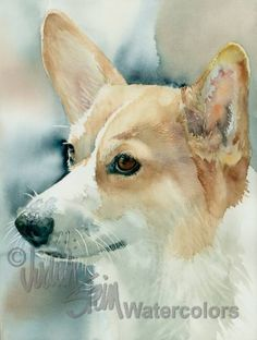 "Pembroke Welsh Corgi, Fawn & White, AKC Herding, Pet Portrait Dog Art Watercolor Painting Print, Wall Art, Home Decor ""Pem"" Judith Stein"
