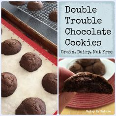 Double Trouble Paleo Chocolate Cookies (Grain Free, Dairy Free, Nut Free) - Gutsy By Nature