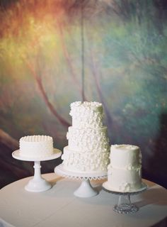 Trio of Wedding Cakes | photography by http://www.jessicalorren.com