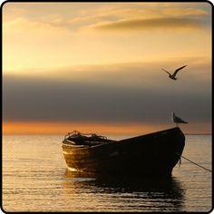 mistymorrning:  sailing on open waters…