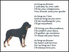 "New Rottweiler Print ""Forever "" Art Poem Rottweiler Training, Rottweiler Love, New Puppy, Puppy Love, I Love Dogs, Cute Dogs, Inspirational Poems, We Bear, Pet News"