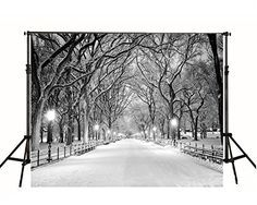 7x5ft Night White Accumulated Snow Road Photography Backd... https://www.amazon.com/dp/B01GV29MN6/ref=cm_sw_r_pi_dp_x_R9l.xbCDZ4H9S