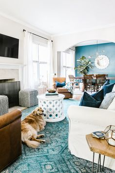 teal home accents Look at the cute pup! Love the teal accent wall in the dining room - connects to teal rug in living room. Teal Room Decor, Teal Rooms, Teal Living Rooms, Accent Walls In Living Room, Dining Room Walls, Dining Room Design, Rugs In Living Room, Teal Accent Walls, Teal Walls