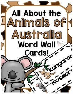 the five senses vocabulary word cards science words