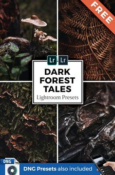 Create dark and atmospheric forest images with only a few clicks in Lightroom Desktop & Mobile. Download this FREE preset pack with 12 professional Lightroom presets for Adobe Lightroom 4-6, CC and Classic (.lrtemplate & XMP presets) as well as the free Lightroom Mobile app for iOS & Android (DNG presets included).