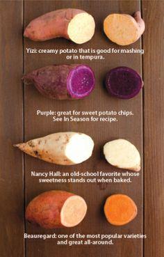 :: vegetables :: Sweet Potatoes: Uncovering North Carolina's Oldest Crop | Edible Feast via Edible Charlotte