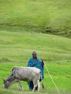 Farm Africa - Etiopia
