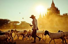 Merit, Sense of Place: Bagan Bliss Photo and caption by Peter DeMarco/National Geographic Traveler Photo Contest Photographie National Geographic, National Geographic Fotos, National Geographic Traveler Magazine, National Geographic Photo Contest, National Geographic Photography, Bagan, Amazing Photography, Travel Photography, Artistic Photography