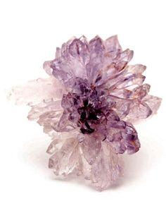 Quartz (Var. Amethyst) / Mineral Friends <3