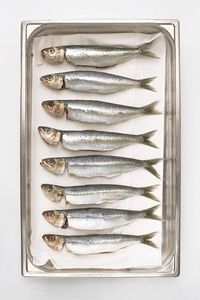 The Dish on Fish: Safe Seafood to Eat While Pregnant