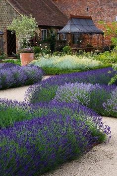 Maybe just lavender, roses, and rounded pea gravel paths would work
