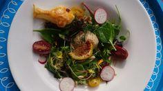 Rezept: Lachsmousse auf buntem Blattsalat