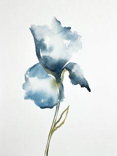 Iris No. 18