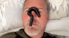 Playing With A GIANT African Millipede On My Face | Rescued From A Leopa...