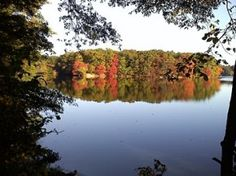 This is Horn Pond in Woburn. My dad and I used to walk the pond and fish here all the time.