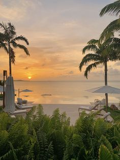Calabash is an exclusive beach home situated in one of the most beautiful spots in the Caribbean. Your island paradise awaits you. Beautiful Islands, Golden Hour, Caribbean, Beach House, Most Beautiful, Paradise, Sunset, Modern, Outdoor