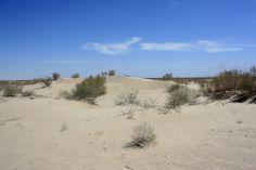Aralkum desert.