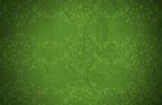 8k Wallpaper, Food Wallpaper, Islamic Wallpaper, Travel Wallpaper, Green Wallpaper, Flower Wallpaper, Nature Wallpaper, Dark Green Background, Technology Wallpaper