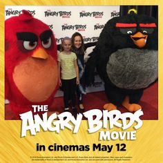 Thoughts on the Angry Birds movie. The pigs turn up, befriend the locals, introduce cool stuff into the society (like country music, trampolines and slingshots), before making off with all the eggs on the island. Angry Angry, Angry Birds, The Birds Movie, Trampolines, Child Development, Pigs, Country Music, Cinema, Island