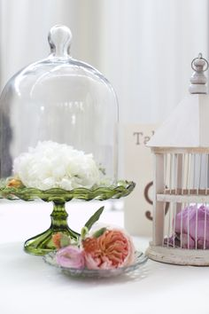 Bell Jar on Green footed crystal platter Bell Jars, The Bell Jar, Glass Domes, Glass Jars, Cake Pedestal, Harvest Moon, Cake Stands, Apothecary Jars, Through The Looking Glass