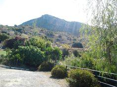 The garden surrounded by countryside / El jardín rodeado de campo