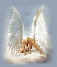 angel wings pictures - Bing Images