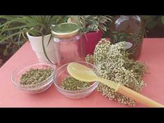 Herbalism, Workout, Health, Youtube, Food, Herbal Medicine, Health Care, Work Out, Essen