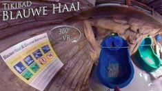 Tikibad 2019 Blauwe Haai 360° VR POV Onride