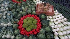 #Organic #Gardening