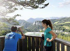 Wandern, feiern und genießen in den Wiener Alpen in Niederösterreich Seen, Mountains, Nature, Travel, Woods, Pictures, Naturaleza, Trips, Viajes