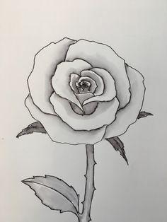 Rose Flower Draw Easy Ideas Sketches Pinterest