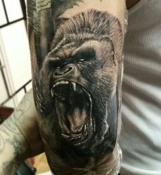 I didn't finish the other portrait but i did this gorilla on a full sleeve project i got going on using after dc show sleeve Monkey Tattoos, Octopus Tattoos, Bear Tattoos, Animal Tattoos, Animal Sleeve Tattoo, Full Sleeve Tattoos, Cover Up Tattoos, Tattoo Drawings, Future Tattoos