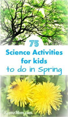 Fun spring science experiment activities for kids from preschool to school age: learn about seeds, bugs, rain, wind, weather, ... Fun nature STEM activities for science class at school and homeschool