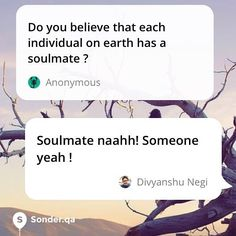 Do you believe that each individual on earth has a soulmate ?