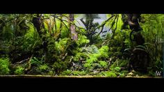 IVAN LUGOVIC @ivan_lugovic_aquascaping For info about this aquascape and to give it a rating: click the link in our profile!