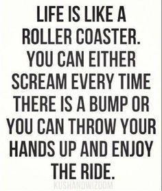 Hang on and enjoy the ride! Celebrate Each Day. www.lmawby.com Quote found on: www.lolsvillage.com