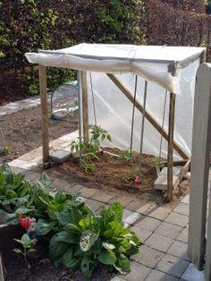 Potager Garden, Garden Compost, Vegetable Garden, Garden Plants, Hydroponic Plants, Hydroponics, Grafting Plants, Greenhouse Shed, Winter Plants