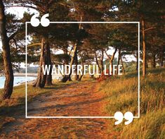 Commercial Advertisement, Scrapbook Quotes, Best Part Of Me, Quotations, Around The Worlds, Hiking, Wanderlust, Fun, Life