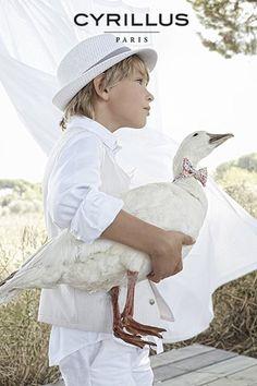 Slide Bird, Lifestyle Fashion, Animals, Tiffany, Photography, Animales, Photograph, Animaux, Birds