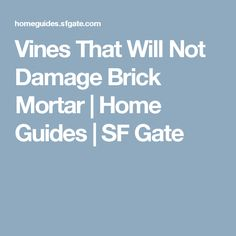Vines That Will Not Damage Brick Mortar | Home Guides | SF Gate